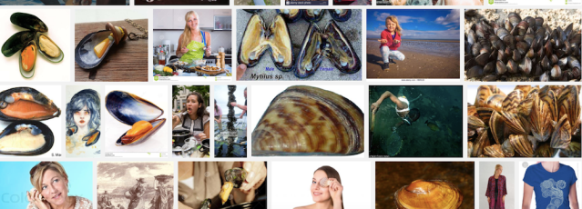 Screenshot duck duck mussel women 6 11 18