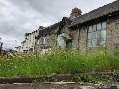Methodist_Chapel_Hay_Wildflowers