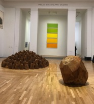 David_Nash_Cardiff_Museum-leaf-colours-setting