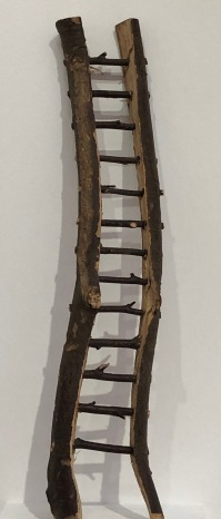 David_Nash_Cardiff_Museum-wavy-ladder