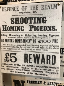 Lincolnshire_Museum_Rural_Life-not-shooting-pigeons